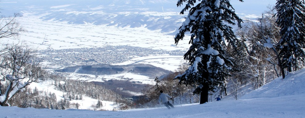 Furano: best powder with clear blue skies